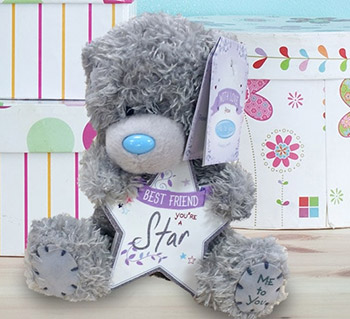 personalised teddy bears soft toys funky pigeon