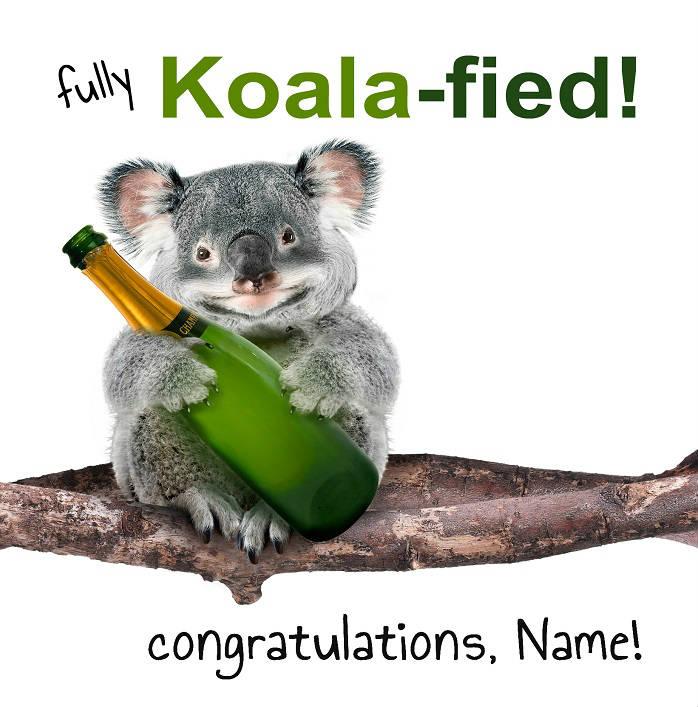 koala bear graduation card cover