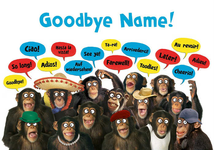 monkeys goodbye card cover