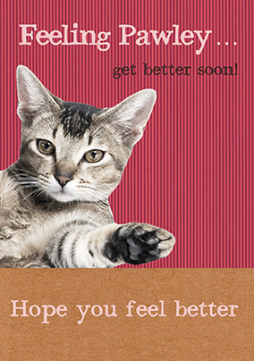 Get Well Card - Feeling Pawley