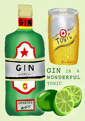 Gin is a Wonderful Tonic Birthday Card
