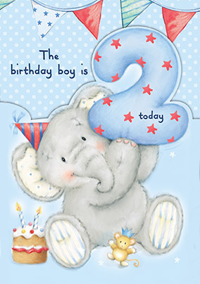 Birthday Boy is 2 Elephant Birthday Card