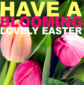 Blooming Lovely Easter Card