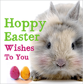 Hoppy Easter Wishes Easter Card