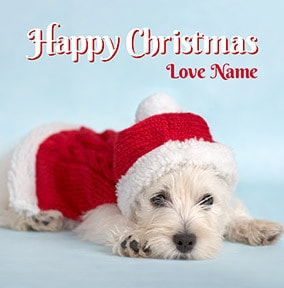Happy Christmas Santa Puppy Personalised Card