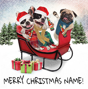 Humour Christmas Card Pug and Frenchies - CardMix