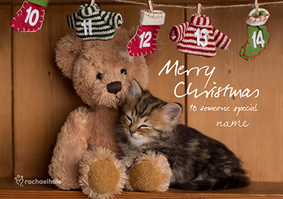 Cat Christmas Card Teddy Bear Snuggles - Rachael Hale