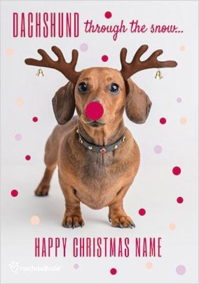 dachshund christmas card through the snow - Unusual Boxed Christmas Cards