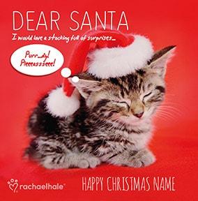 Kitten Christmas Cards.Kitten Dear Santa Personalised Christmas Card