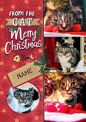 4 Photo from the Cat at Christmas personalised Card