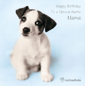 Jack Russell puppy Special Auntie personalised card