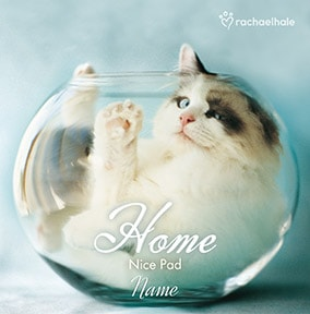 Cat in fish bowl Nice Pad personalised card