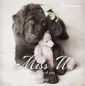 Cute Dog personalised Missing You card