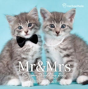 Kitten Couple personalised Wedding Mr & Mrs card
