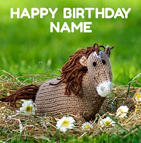 Happy Birthday Horse Card - Knit & Purl