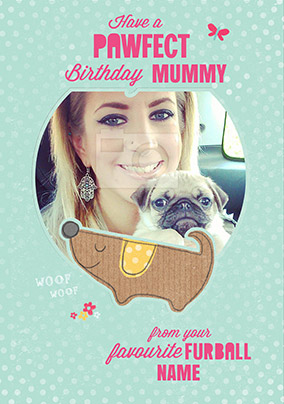 Birthday Card From The Dog NO Preview Image Is Not Found