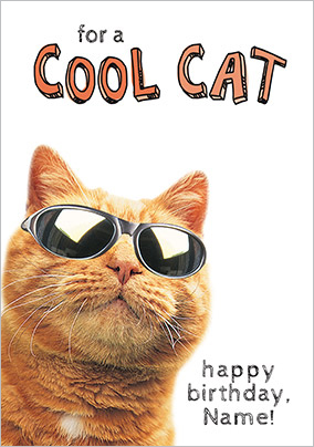 Cool Cat Humorous Birthday Card