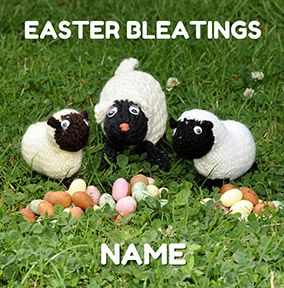Knit & Purl - Easter Bleatings