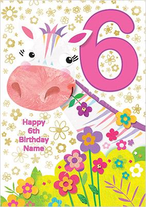 Zebra 6 Today Birthday Card Funky Pigeon