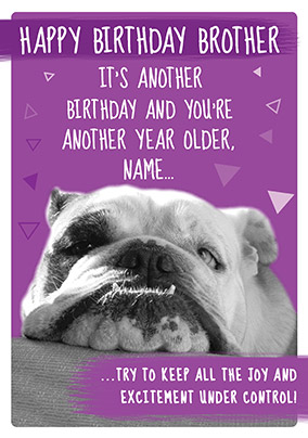 Grumpy Bulldog Brother Birthday Card