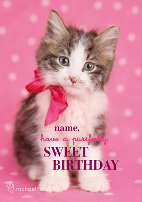 Kitten Personalised Birthday Card Purrfectly Sweet