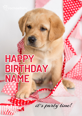 Puppy It's Party Time Birthday Card - Rachael Hale