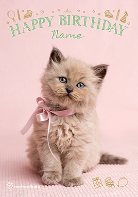 Cute Kitten With Pink Bow Birthday Card