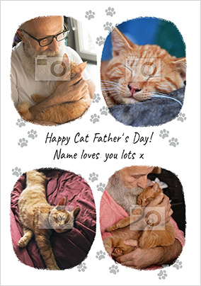 Happy Cat Father's Day Photo Card
