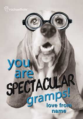 Bassett Hound Spectacular Gramps Personalised Card