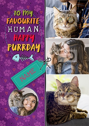 From The Cat Multi Photo Birthday Card