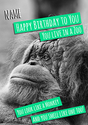Birthday Animals - Birthday Card You Live in a Zoo