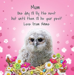 I'll be your Pest until I fly the Nest Card
