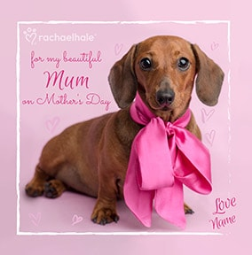 Dachshund Beautiful Mum Personalised Mother's Day Card