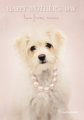 Mother's Day Maltese Puppy Personalised Card