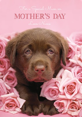 Mother's Day Labrador Puppy Personalised Card