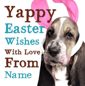 Dog Tired - Yappy Easter