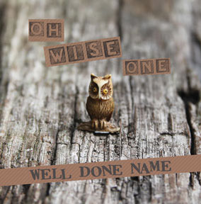 The Bees Knees - Oh Wise One