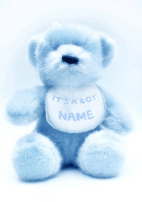 Baby Photo - Teddy Bear Boy