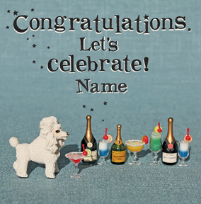 Bees Knees - Congratulations Let's Celebrate
