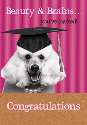 Congratulations You've Passed - Beauty & Brains Card