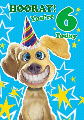 6th Birthday Card - Dog's Whiskers