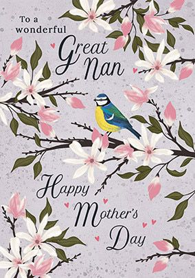 Great Nan Mother's Day Card