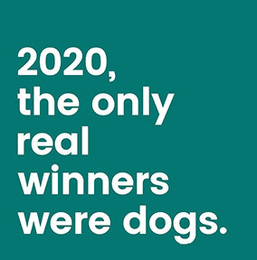 2020 the Real Winners Were Dogs Card