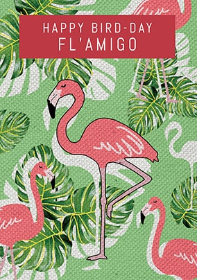 Flamingo Amigo Birthday Card