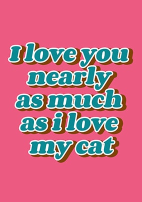 I Love My Cat Valentines Card