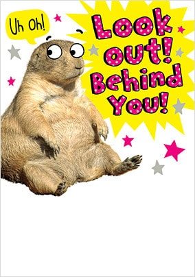 Gifts Look Out Behind You Birthday Card - A5 - By Funky Pigeon