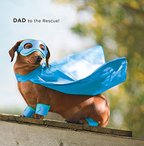 Dad to the Rescue Father's Day Card