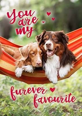 Furever Favourite Valentine's Day Card