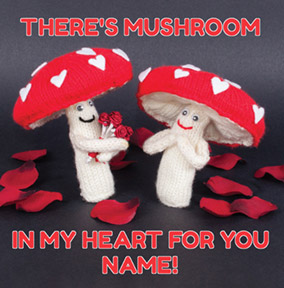 Knit & Purl - Mushroom in my Heart