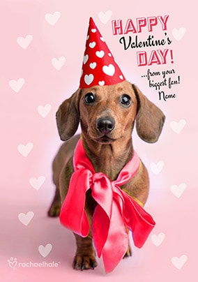 Dachshund Biggest Fan Personalised Valentine's Card